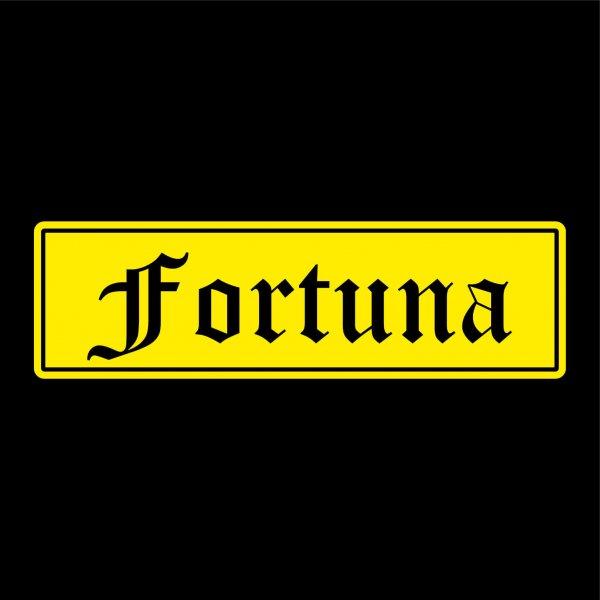 Fortuna Städte Auto Aufkleber Sticker 5cm x 17cm