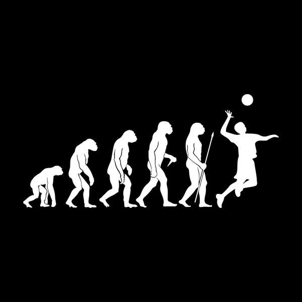 Volleyball Evolution Aufkleber Sticker 31 x 14 cm