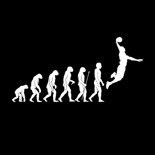 Basketball Forward Dunk Evolution Aufkleber Sticker 31 x 15,5 cm