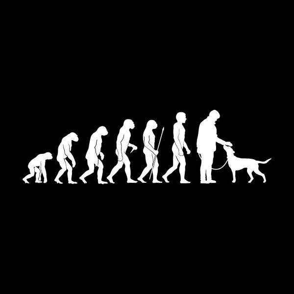 Hunde Evolution Aufkleber Sticker 31 x 9 cm
