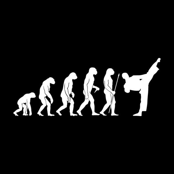 Karate Evolution Aufkleber Sticker 31 x 12 cm