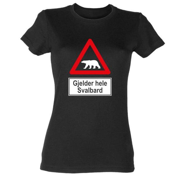 Spitzbergen Svalbard Damen T-Shirt