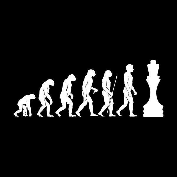 Schach Evolution Aufkleber Sticker 31 x 12 cm