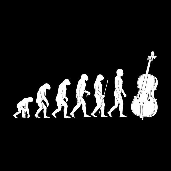 Cello Evolution Aufkleber Sticker 31 x 14,5 cm