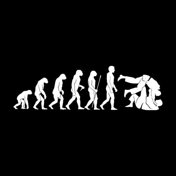 Judo Evolution Aufkleber Sticker 31 x 9 cm