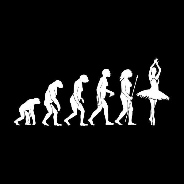 Ballett Evolution Aufkleber Sticker 31 x 13,5 cm
