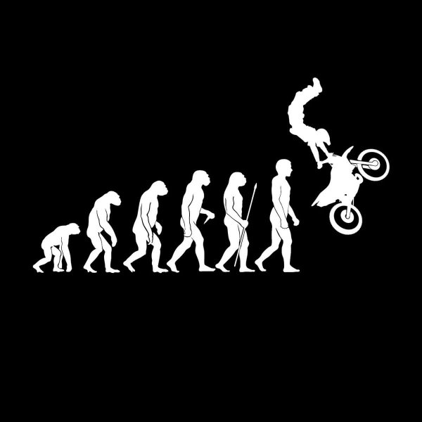 Motocross Dirt Bike Crosser Motorrad Evolution Aufkleber Sticker 31 x 17 cm